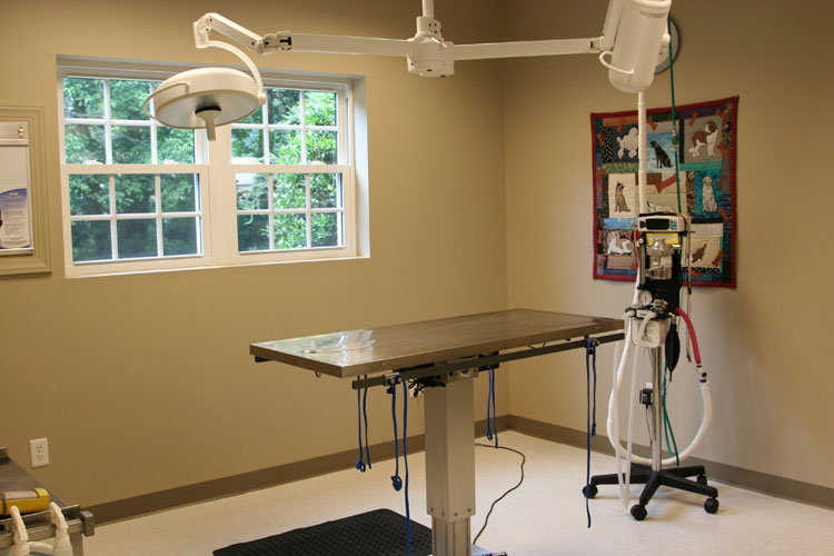 Surgery table